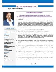 Resume Yahoo Ceo Sle Resume Of Sales Executive Resume Executive Financial Technology Susan Ireland