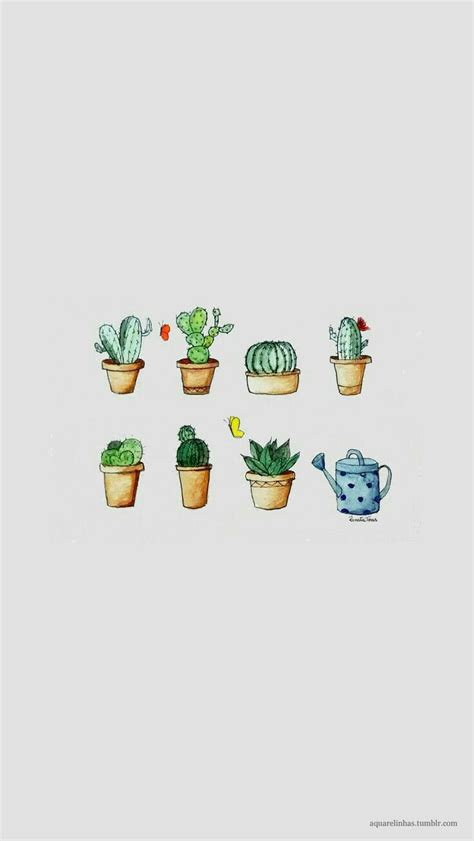 wallpaper for iphone cactus fondo de pantalla backgrounds pinterest cactus