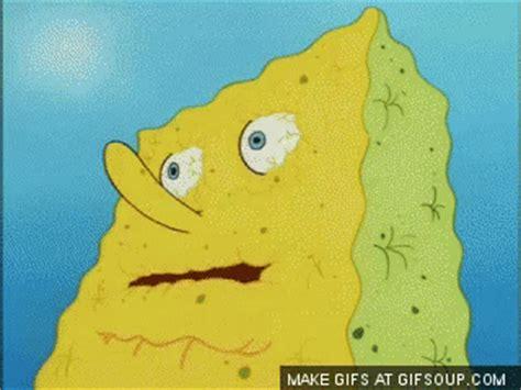 Spongebob Water Meme - spongebob dry gifs find share tenor