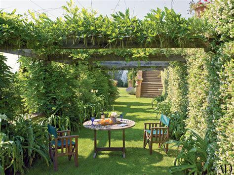 25 garden trellises and pergolas perfect for summer