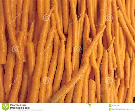 are carrots a root vegetable fresh and healthy carrots stock photo image 60858053
