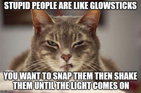 Cranky Meme - cranky kitty imgflip