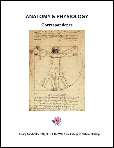 Pdf Anatomy And Physiology College Class by Anatomy And Physiology College Of Healing