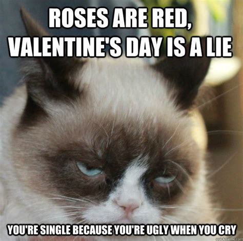 Cute Valentine Meme - 25 best ideas about valentines day memes on pinterest