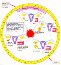 Contraception Naturelle Calendrier L Appareil G 233 Nital F 233 Minin Pass Amour Construire Un
