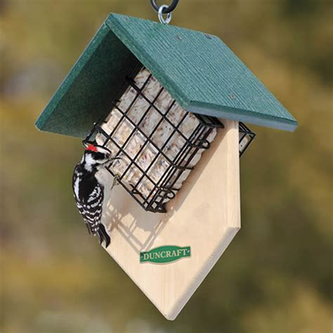 duncraft com duncraft double woodpecker suet feeder