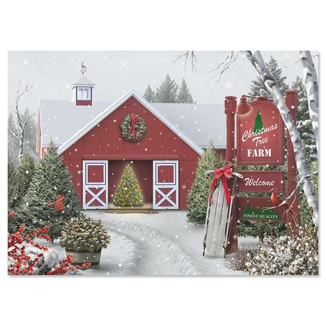 Ordinary Non Photo Personalized Christmas Cards #1: Tree-farm-nonpersonalized-christmas-cards-set-of-18.jpg