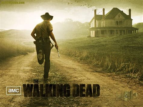 wallpaper 3d the walking dead full hd the walking dead wallpaper full hd pictures