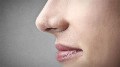 s nose is warm climate not parents to help shape your nose