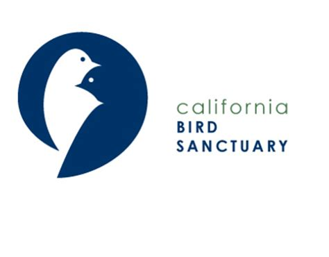california bird sanctuary on behance