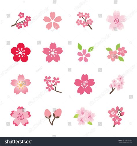 cherry blossom icon set stock vector 240197542 shutterstock