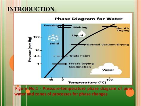 freeze drying phase diagram freeze drying ppt