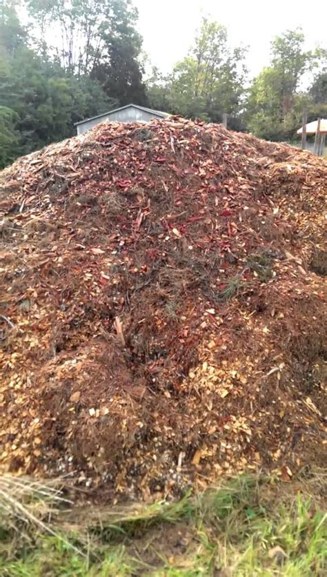 Composting Horse Manure Peace Of Heaven Farms Manure Compost For Vegetable Garden