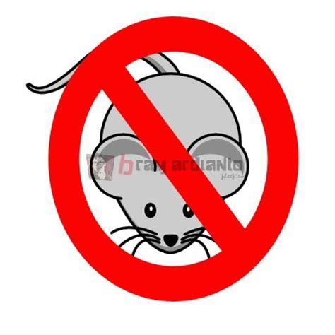 cara membuat jebakan tikus di dalam rumah cara praktis mengusir tikus di rumah anda bramardianto com