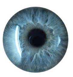 eye lens eye lenses hd png images free top 10 wallpapers