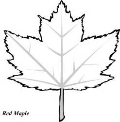 maple leaf coloring page maple leaf coloring pages bestofcoloring