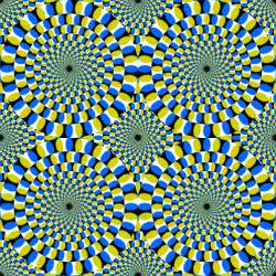 Square Black Vase Art Cakes Amp Me Eye Tricks
