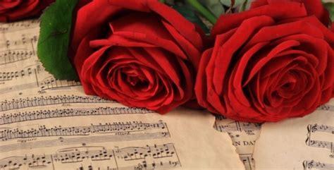 red roses on vintage sheet music by vintervarg videohive