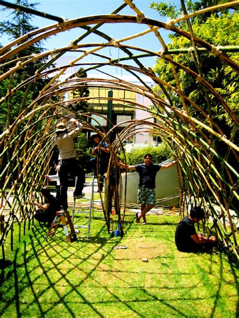 whats a trellis what s strong sustainable and headed to a museum near