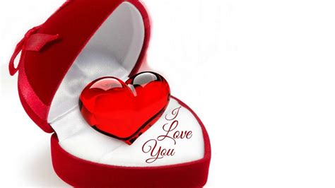love photo  love hd wallpapers  wallpaper