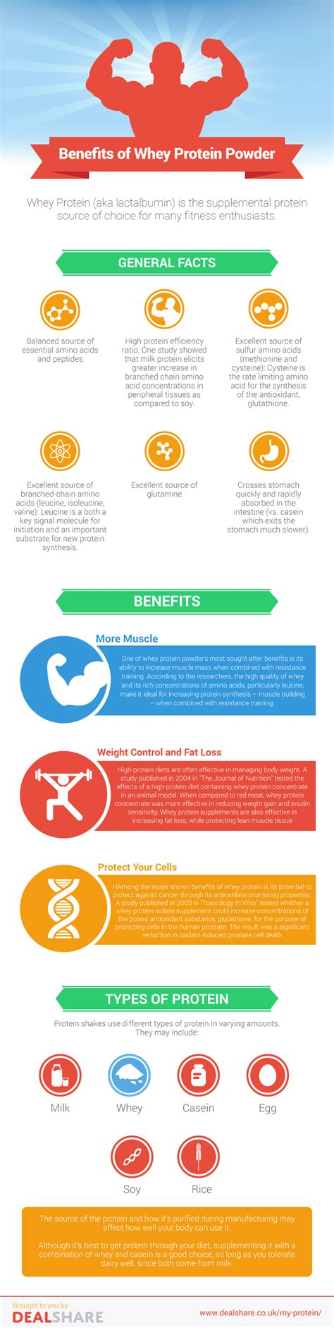 d protein powder benefits why whey powder is the best protein supplement infographic