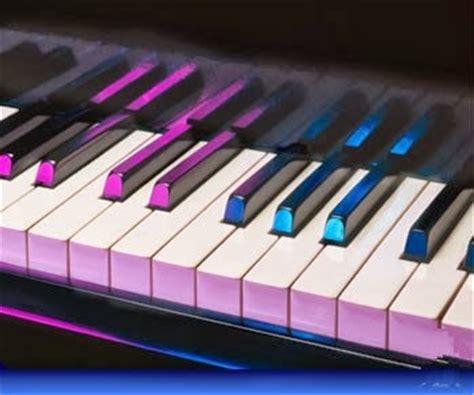 casio keyboard  beginners   piano keyboard reviews