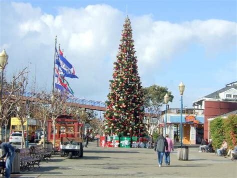 pier39 christmas tree picture of pier 39 san francisco