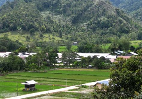 Essay Trip To Sarawak by Essay Topics Essay Trip To Sarawak