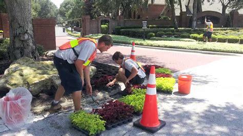 landscape maintenance services commercial landscaping services orlando commercial landscape maintenance central florida