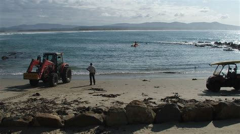 boat r gone wrong boat flips in bastion point safe harbour southern