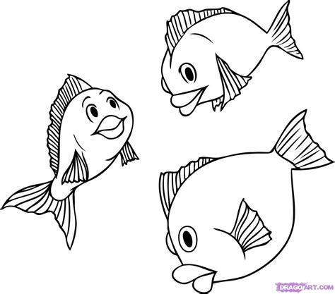 How To Draw Fish How To Draw A Realistic Fish Step By Step Images