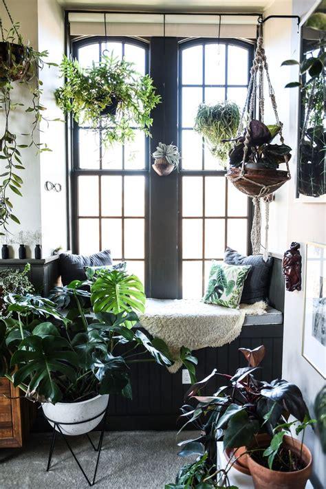 indoor plant options for apartments cozy bliss best 25 loft apartments ideas on pinterest loft home