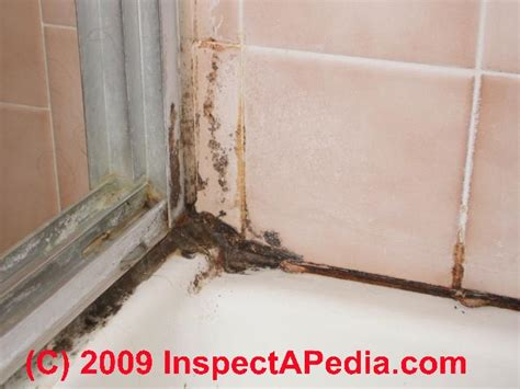 mold in bathroom shower bathroom mold mold in bathrooms on tile and other