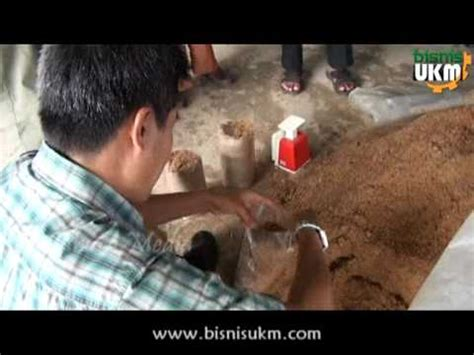 Fermentasi Pakan Ternak Babi cara ternak cara ternak entok