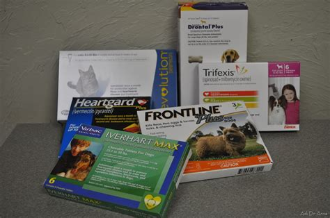 heartworm medication heartworm treatment in dogs ask dr guthrie pet