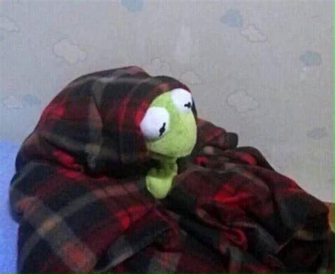 Meme Blanket - 25 best ideas about kermit the frog gif on pinterest