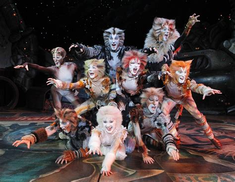 cats musical review cats broadway in chicago chicago theater beat