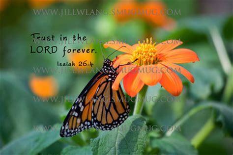 butterfly quotes bible image quotes at relatably.com