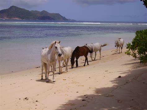 turisti per caso seychelles turisti per caso viaggi vacanze e turismo turisti