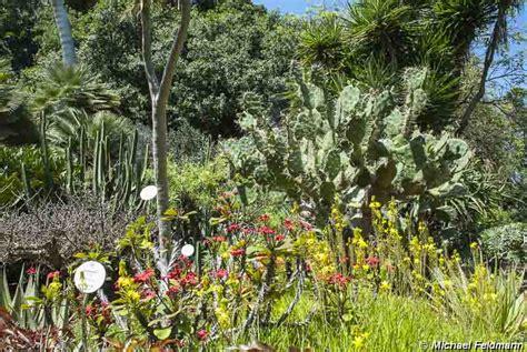 botanischer garten de la de la botanischer garten