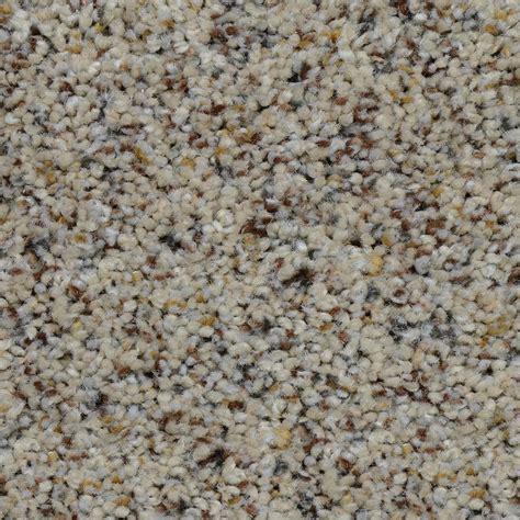 Home Decorators Carpet Home Decorators Collection Carpet Sle Club Ii Color Lowden Texture 8 In X 8 In Ef