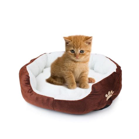 Cutest Cats Pet Pet Pet Product mylazypet soft and cat pet bed mini house for