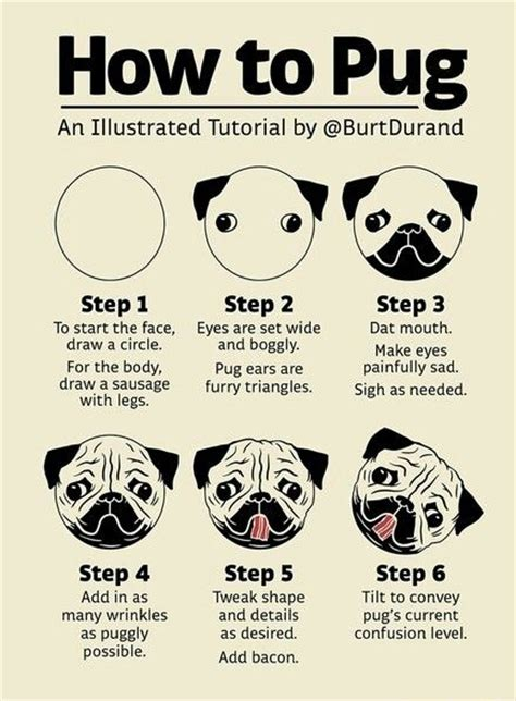 pug drawing step by step 25 best ideas about pug on a pug pugs and pug puppies