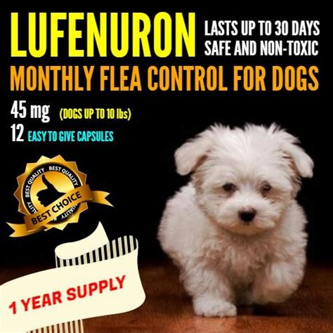 lufenuron for dogs lufenuron 1 year supply for cats dogs animal house llc