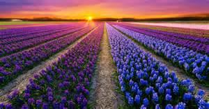 colorful photos colorful landscapes photo contest viewbug