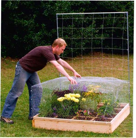 build a square foot garden wired how to wiki all new square foot gardening square foot gardening