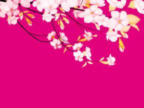 pretty pink powerpoint backgrounds flower pink pretty powerpoint templates flower pink