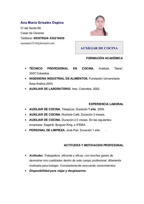 Modelo Curriculum Vitae Cocinero Curriculum M 170 Cocina