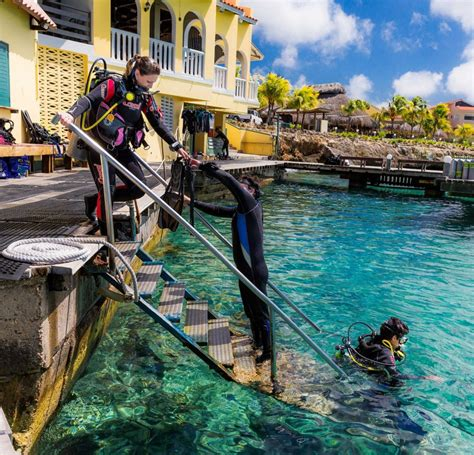 bonaire dive resorts buddy dive resort accommodation in abc islands