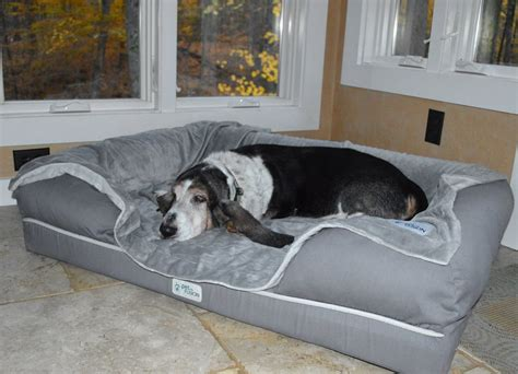 huge dog bed 7 of the best dog beds for large dogs barkpost